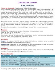 Senior Kg Curriculum Insight July 2017